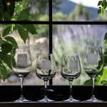 Nationally Award-Winning Wineries
