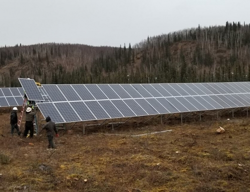 Edwin Bifelt, egresado de SEI, funda una empresa de energía solar desarrollando importantes instalaciones y empleos locales